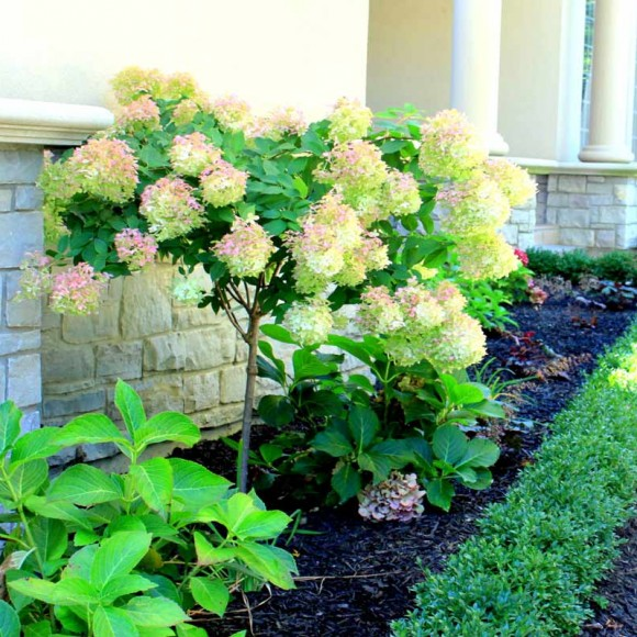 landscaping-and-design-34