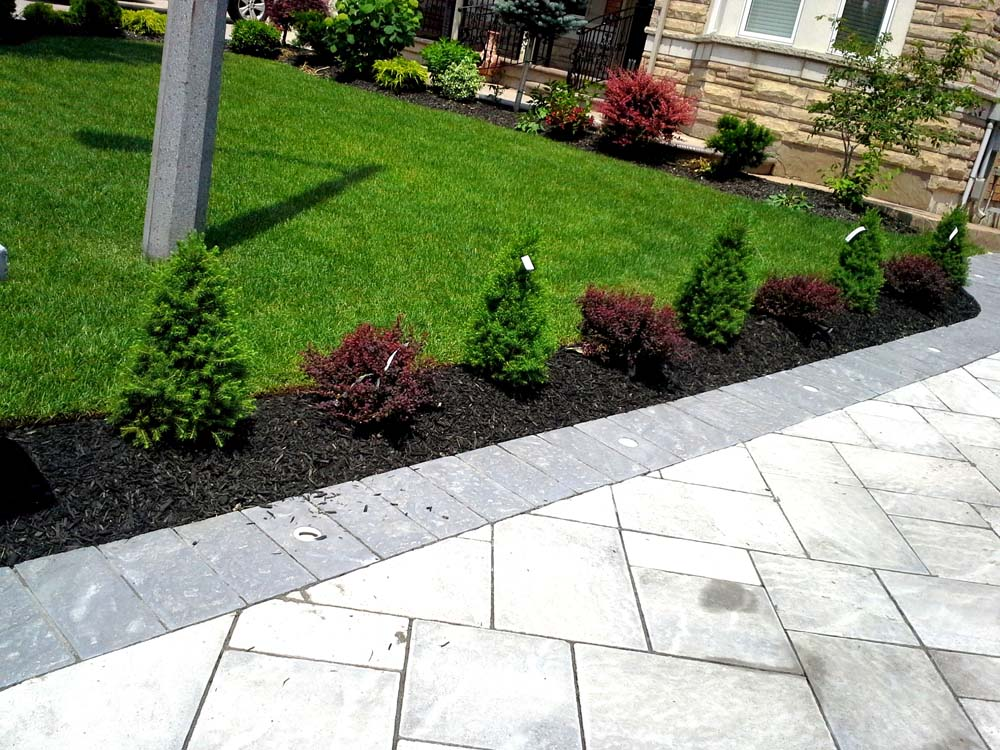 Ace landscape and construction landscaping and design 53 for Landscape design and construction