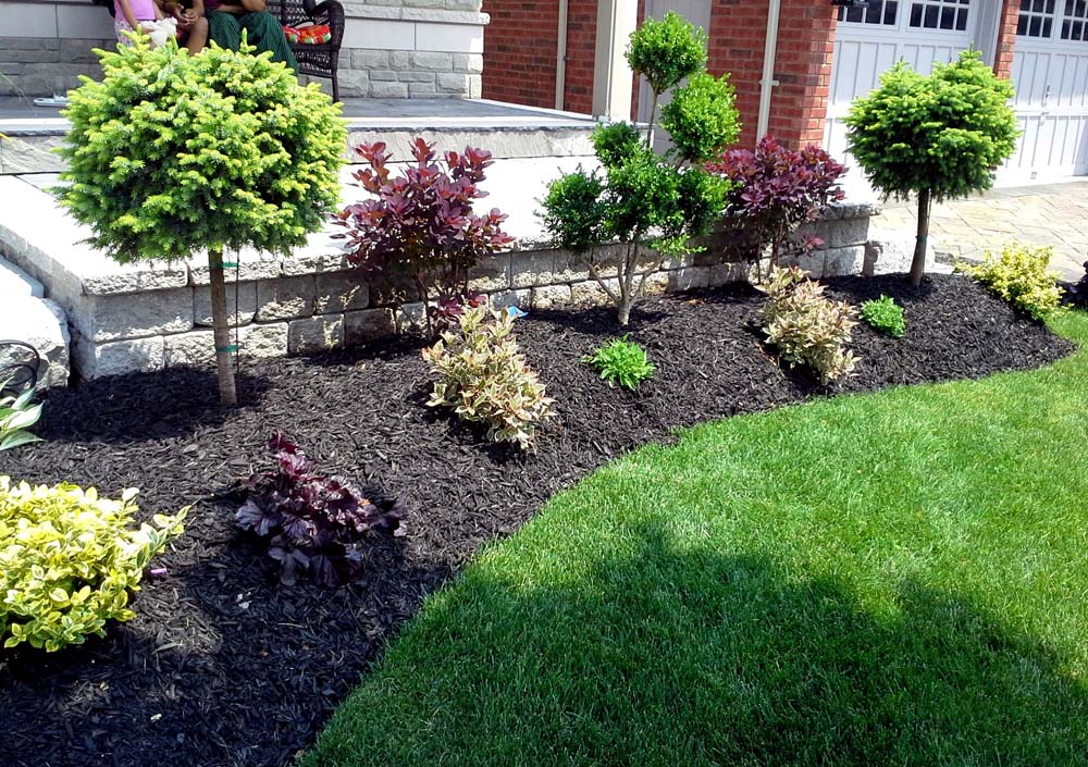 Ace landscape and construction landscaping and design 55 for Landscape design and construction