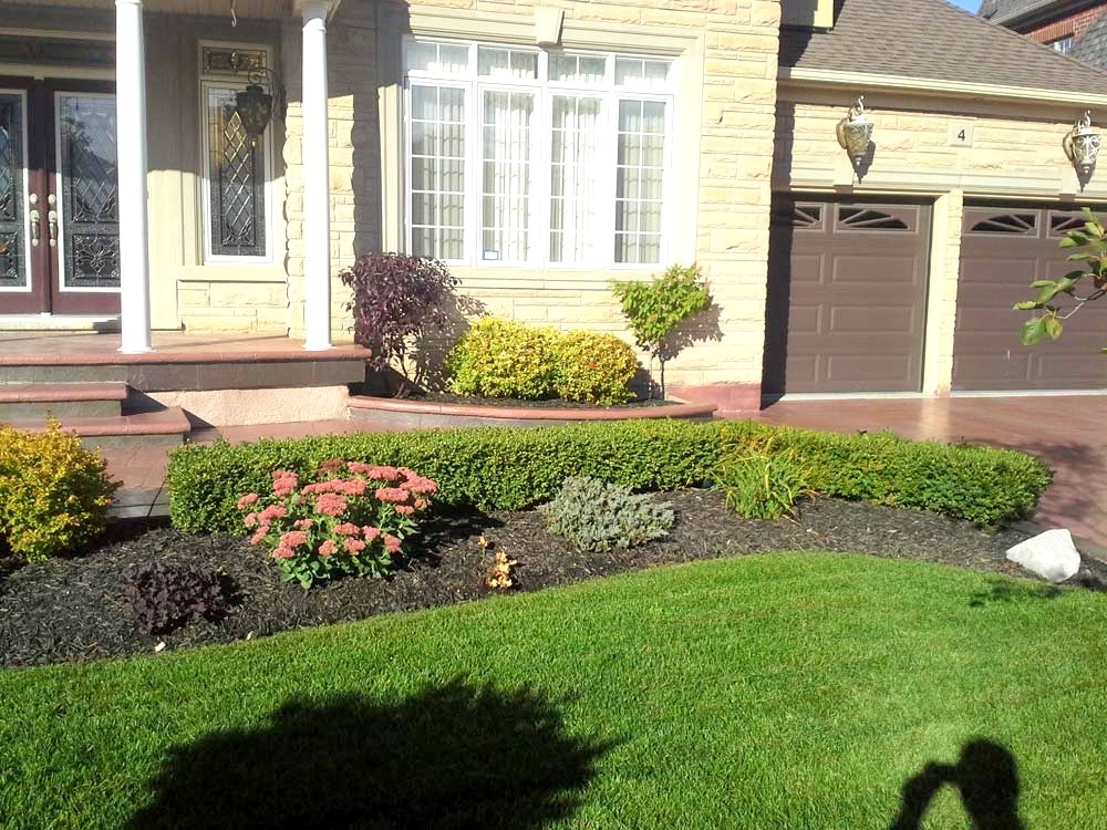 Ace landscape and construction landscaping and design for Landscape design and construction